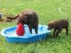 03-ella-badet-mit-meinem-lieblingskissen.jpg